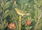 Nightingale, Pompeii