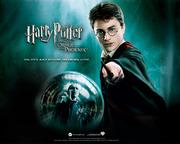 Harry Potter gruppen :)