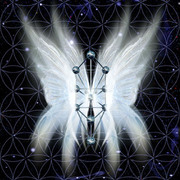 Messages of the Angels and Ascended Masters