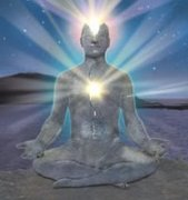 Spiritual Wellbeing - Cocreation