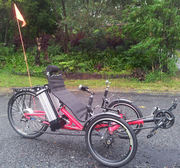 Electric Bicycle Interest