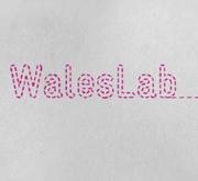WalesLab