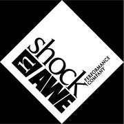 Shock n Awe Performance Co
