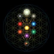 "Starts May 21: ""Jung, Alchemy & The Tree of Life: Bridging Spirit and Matter""— 4-Webinar Series: Eva Rider MA, MFT, with Bonnie Bright, Facilitator"
