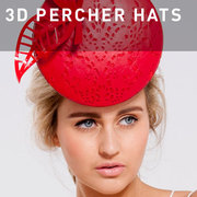 D19 - 3D Percher Hats