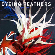 D28 - DYEING FEATHERS