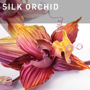 G05 - SILK ORCHID