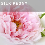 G04 - SILK PEONY