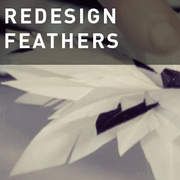 09 - REDESIGN FEATHERS