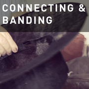 05 - CONNECTING & BANDING