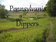 Pennsylvania Dippers