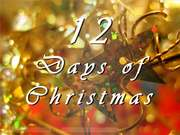 12 Days of Christmas Discount Book Tour