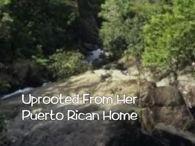 Book Video Trailer: Josefa's Curse