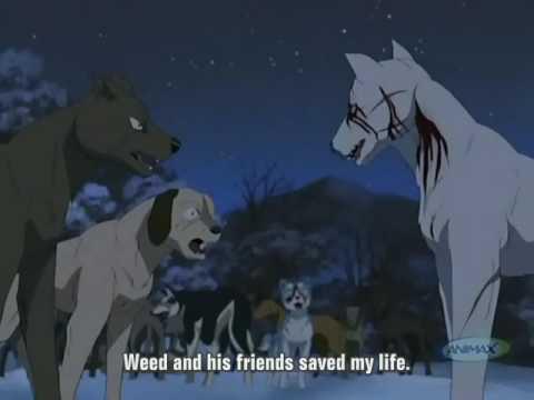 Ginga Densetsu Weed Episode 12 Part 1