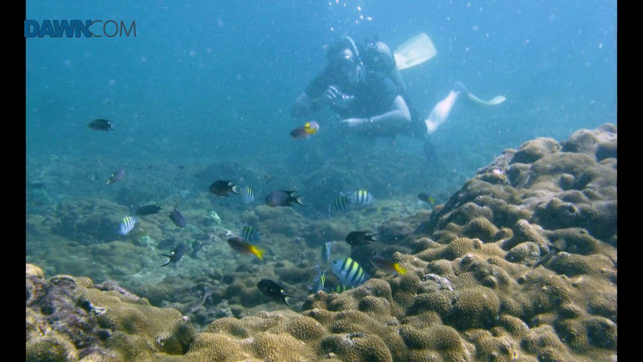 Scuba diving off the coast of Karachi