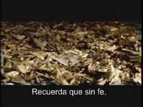 Liderazgo Motivacion Marcianitos El Mejor Video que He Visto