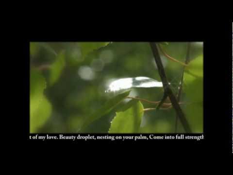 Kapel'ka (A droplet). Ecovillage Slavnoye