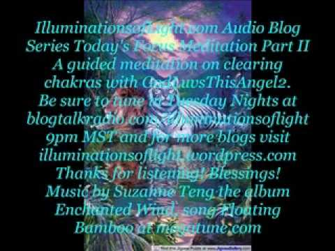 Illuminations of Light Audio Blog Series-Today's Focus: Meditation Part 2b