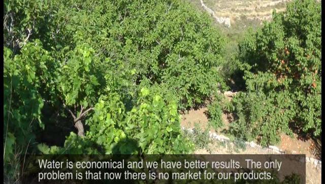 Paros Island- Food of the Past: Nourishment for the Future