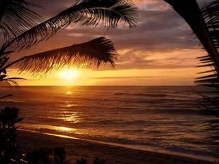 Jamaica Farewell : The Sun
