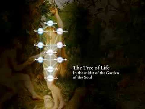 6: The Two Trees - Kabbalah and Tantra