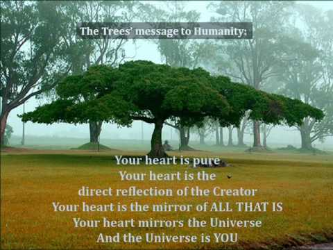 Trees to Humanity: Listen With Your Heart