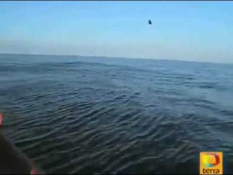 UFO OVNI Dives Into Ocean to Escape Human Pusuit Off Galicia, Spain