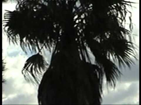 UFO Flying above the Aeroplane.Multiple Sightings Over Sydney.4.5.2011.Please watch Full screen.