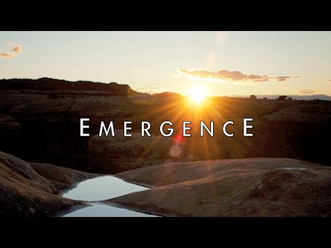 2014 Year of Emergence - Lee Harris