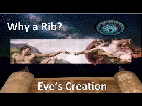 Why a Rib? The Creation of Eve