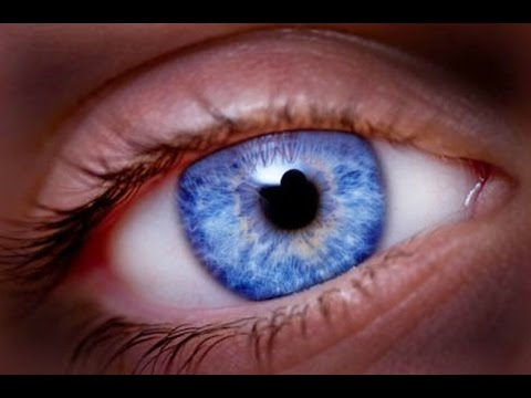 The Origin of the Blue Eyes The Ancient Gods and Their Royal Descendants