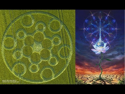 Crop Circles - the Language of Creation
