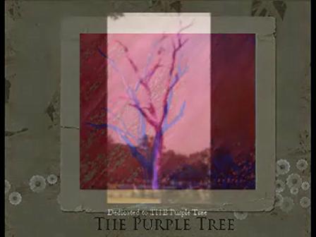 The Purple Tree Series