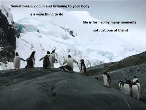 'Antarctic Odyssey a New Beginning' by Gabriella Guglielminotti Trivel
