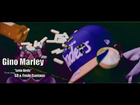Gino Marley f/ SD & Fredo Santana - Lotta Birds (Official Video) Shot By @AZaeProduction