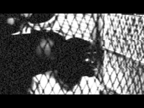 Kylledge - Locked Up (Free Da Goonie Gang) 2014 Official Music Video (Dir. By @ggridah18)