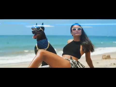"Snoop Dogg ""Toss It"" ft. Too $hort"