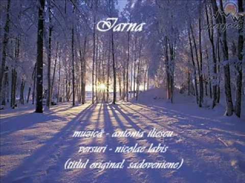 Iarna (L'hiver) - antonia iliescu / nicolae labis