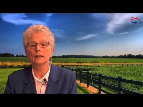 Ann Corcoran on Refugee Resettlement