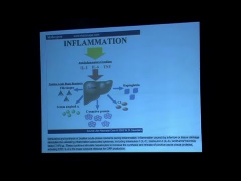 What is Inflammatory Model of Ageing? By Dr Deepak Chaturvedi