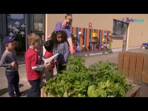 Food Allergy Training for Early Childcare Providers (Part 1 of 2)