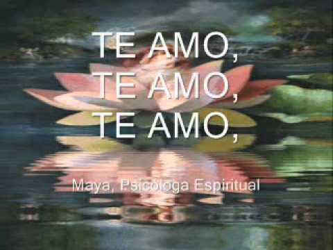 LLEVANDO AMOR A TU NIÑO INTERIOR. 2A. EDICION Original maya333god