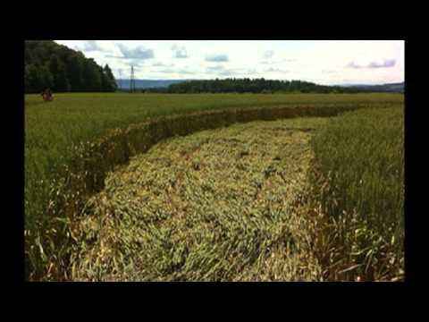 Crop circles 3 july 2013 - Rheinau near Zurich, Switzerland - 3 July 2013