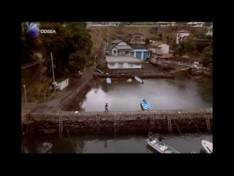 The Cove Documental (TRADUCCIÓN AL ESPAÑOL)