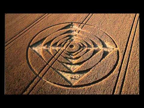 Wiltshire, UK crop circles - 1 August 2013