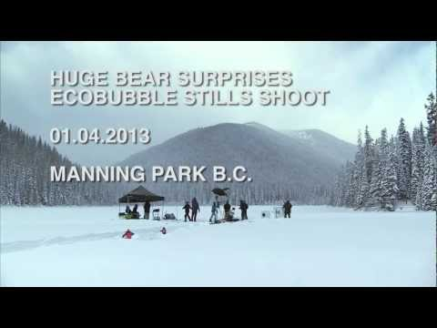 Huge Bear Surprises Crew on EcoBubble Photo Shoot in BC