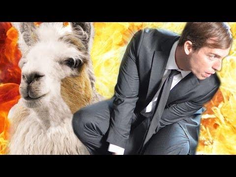 Llama gets into action movie gunfight