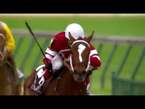 Longines Kentucky Oaks 140 - It's a wrap