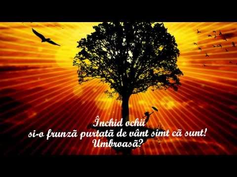 IRINA LUCIA MIHALCA  O frunză purtată de vânt