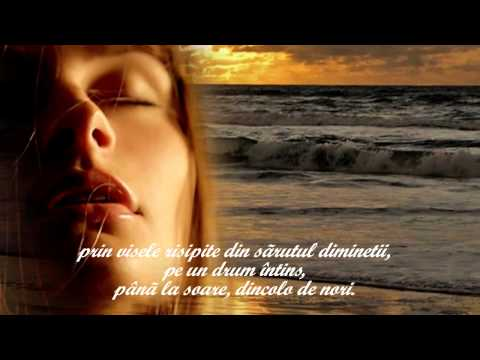 IRINA LUCIA MIHALCA  - Peisajul pictat în câmpia din noi